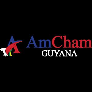 amcham-logo-wide-alt