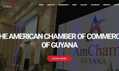 AmCham-Website